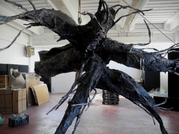 albero-radice-03